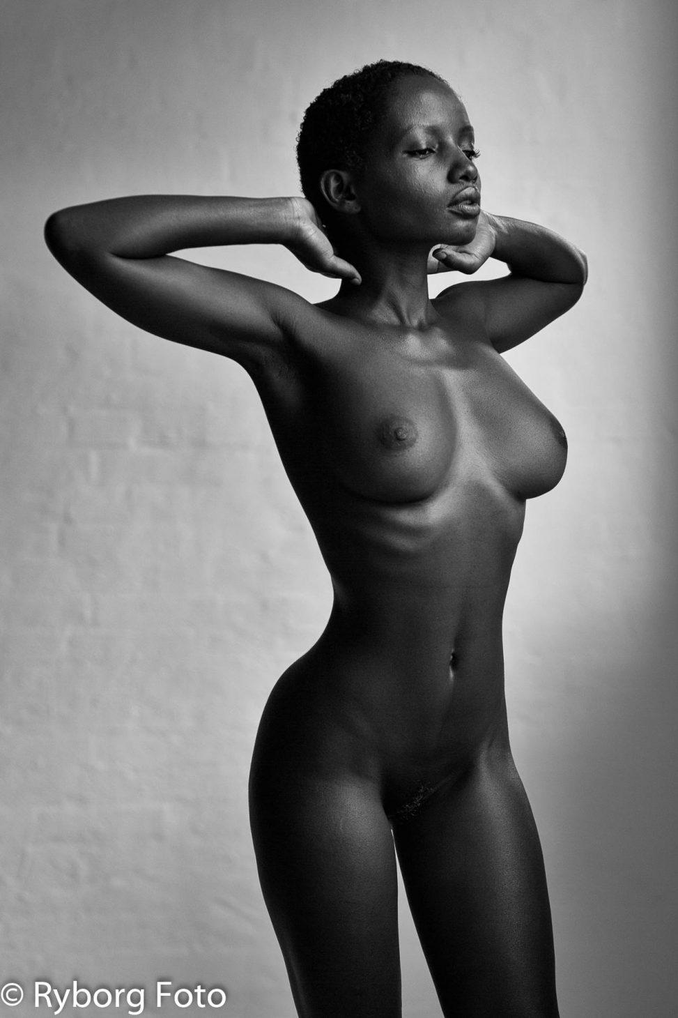 nudeart wonder shasta